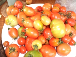 Icy Creek tomatoes